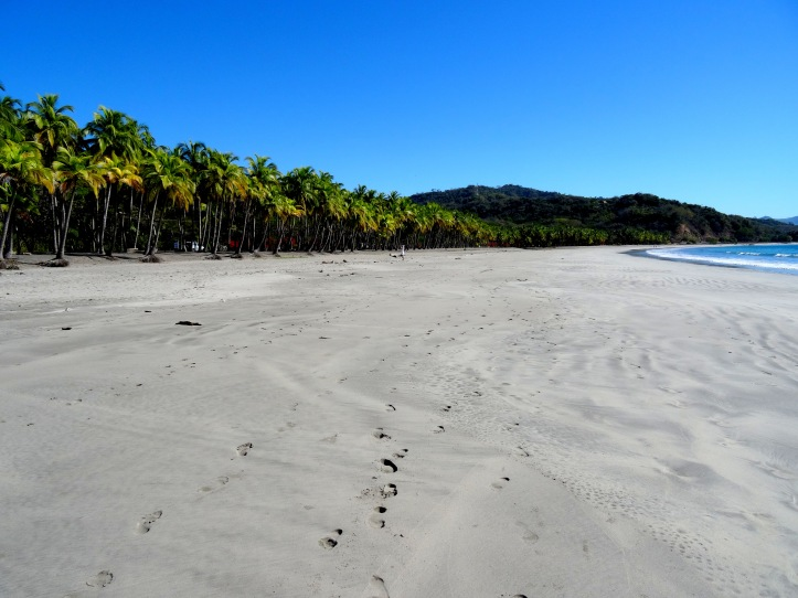 13 - Playa Carrillo 1