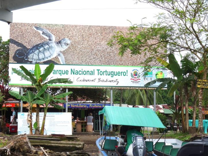 4 - Tortuguero 24