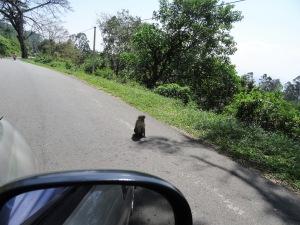 Sri Lanka By Gael Besseau